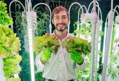 Vertical Farming is the Next Step for Grocery Stores